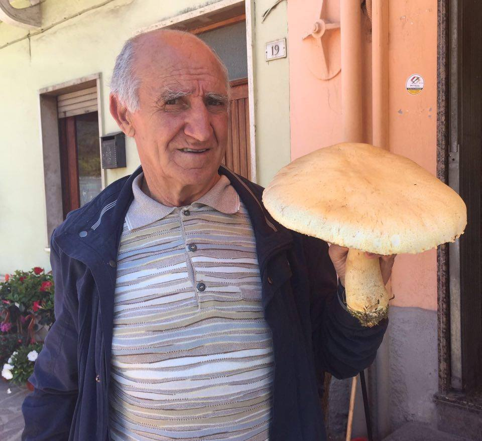 Maxi fungo trovato a Collelongo