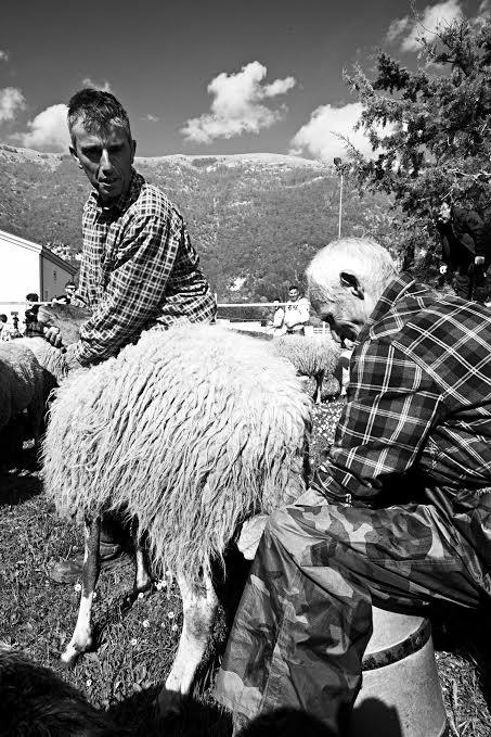 Quindici maggio coi pastori a Civita D'Antino