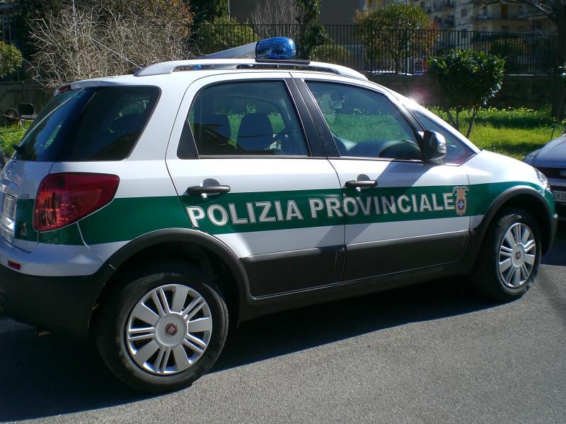 Le attività svolte nella regione dalla polizia provinciale