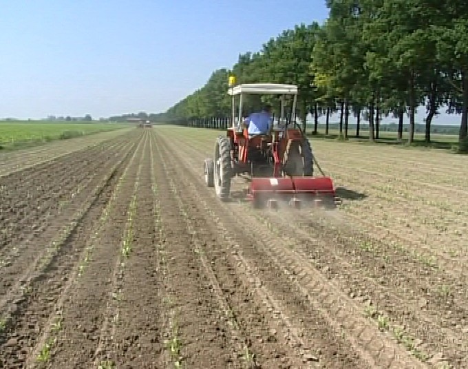 L'agricoltura: storia ed evoluzione