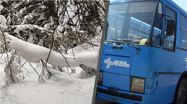 Viaggi in bus. Gli aggiornamenti sulle corse forniti dalla Tua (ex Arpa). AGGIORNAMENTI ORE 16:30 DEL 19 GENNAIO