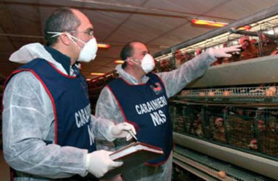 Blitz dei Nas negli ipermercati del Fucino
