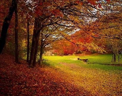 """In arrivo un autunno a tratti piovoso, poi potrebbero prevalere le """"calde"""" ottobrate"""