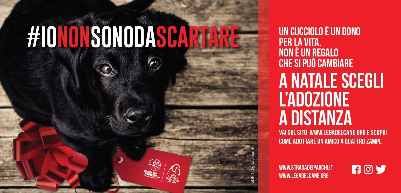 #iononsonodascartare, la campagna natalizia della Lega del Cane e di Strada dei Parchi