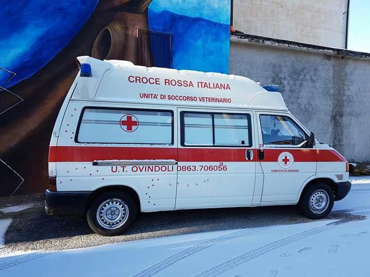 Ambulanza veterinaria ad Ovindoli, bloccatoil progetto dei volontari della Cri
