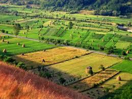 L'Agrobiodiversità tra tradizione e innovazione, un convegno al Serpieri di Avezzano