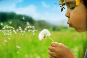 Celano, allergie: incidenza oltre l'11% della media nazionale (su 147 studenti). Uno studio indaga correlazione tra specie di piante e insorgenza delle malattie