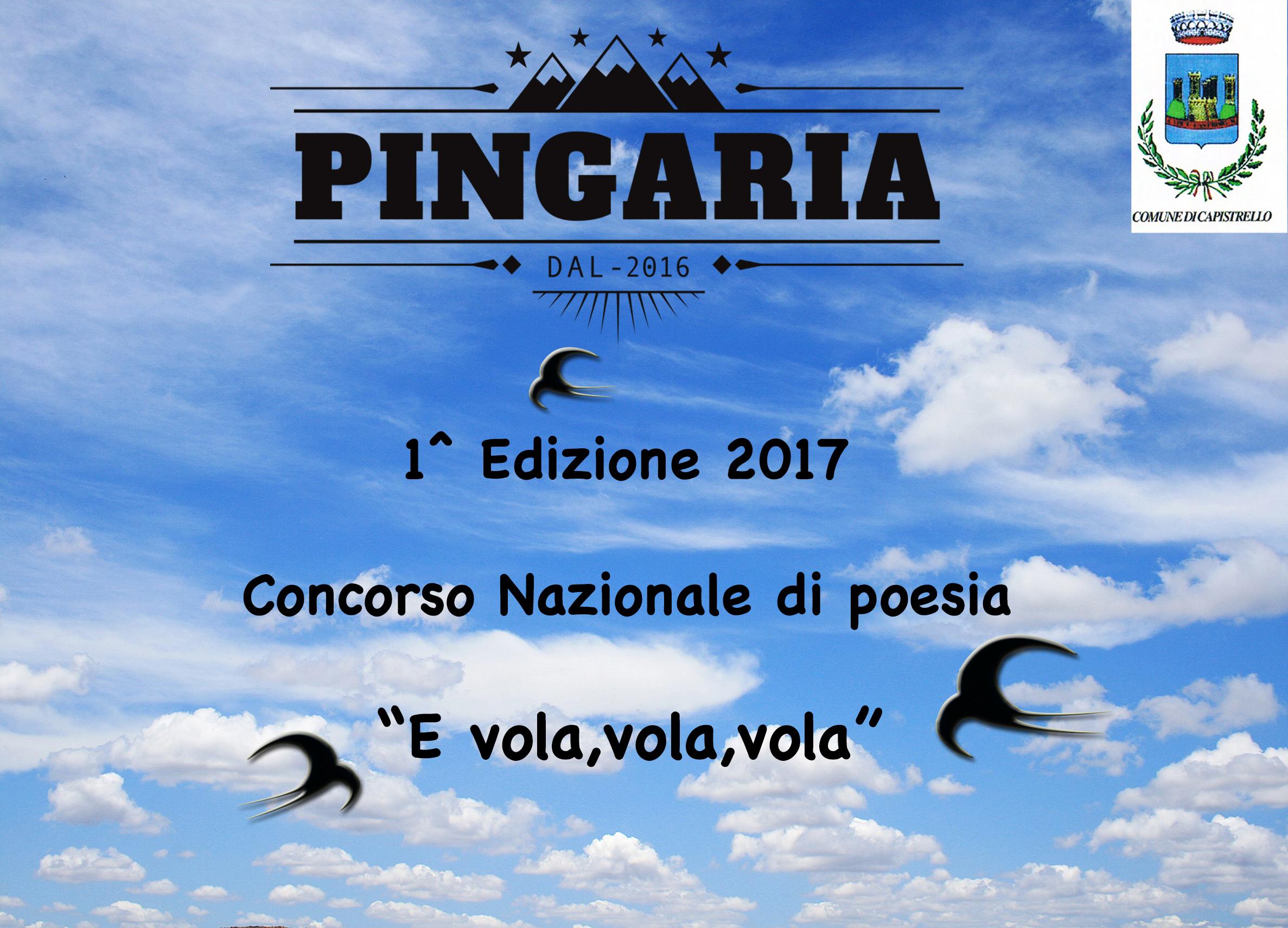 """Prima edizione del concorso di poesia """"E vola vola vola"""". Ecco tutte le informazioni"""