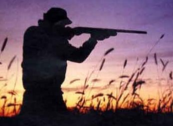 """WWF Abruzzo """"La Regione aveva chiesto la modifica del decreto cautelare che ha fermato l'attività venatoria"""""""