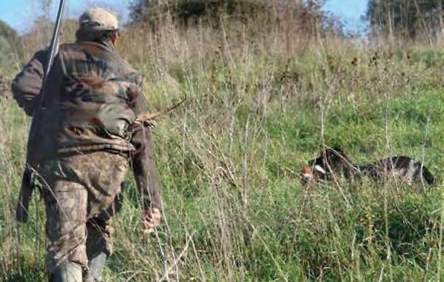 Calendario venatorio Abruzzo. Il TAR accoglie parzialmente la sospensiva richiesta dal WWF, niente caccia alla lepre a settembre
