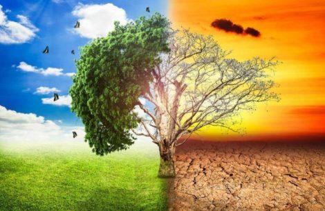 Incontro MS5 a L'Aquila sui cambiamenti climatici e la gestione delle emergenze