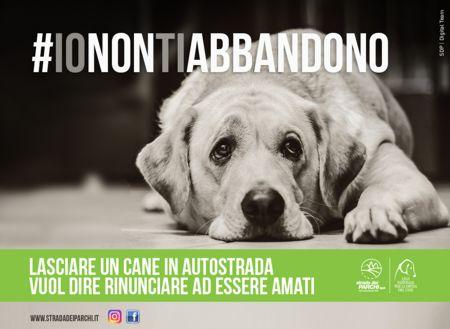 Strada dei Parchi e Lega Nazionale per la difesa del cane insieme contro l'abbandono