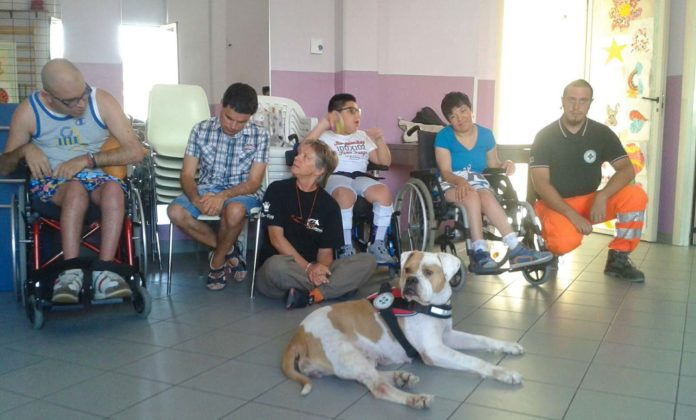 Ad Avezzano un seminario sui cani da allerta medica e di supporto alle disabilità