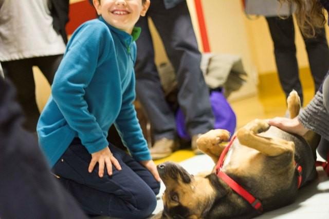 Alessandra Gentile una giovane marsicana al primo Pet Therapy a L'Aquila