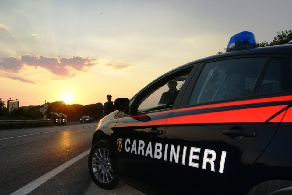 """""""Non avevamo soldi per sfamarle"""", a Collarmele i carabinieri denunciano due persone per uccisione di animali. Hanno lasciato morire di stenti 2 pecore"""