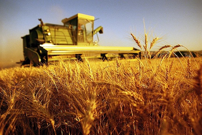 Ritorna la manifestazione Agricoll