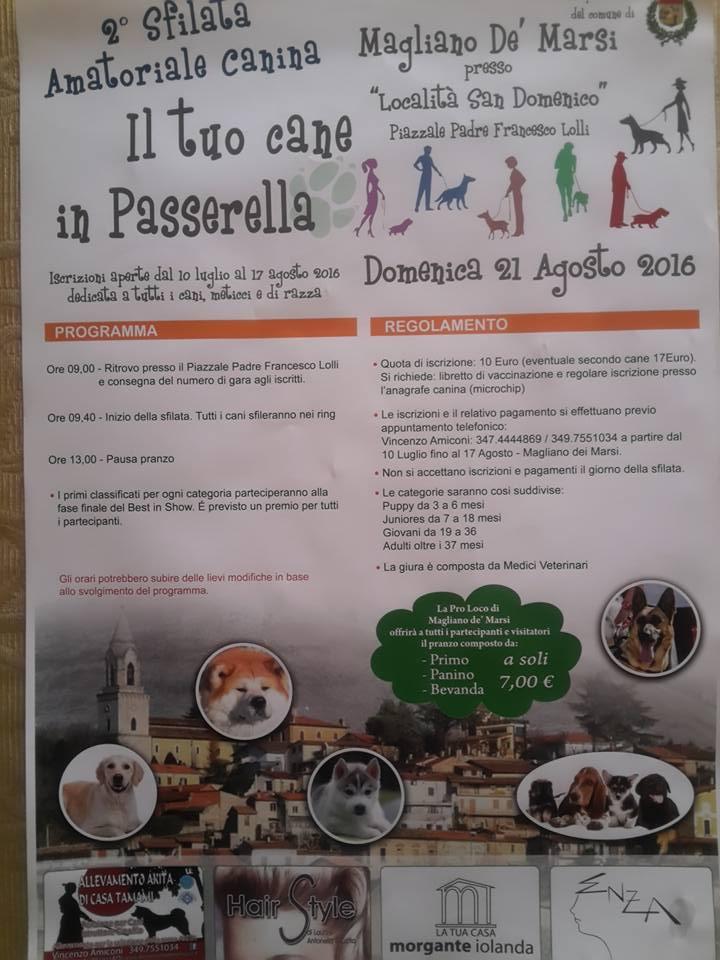 """Torna a Magliano la sfilata amatoriale canina """"Il tuo cane in passerella"""""""