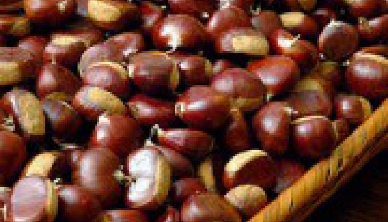 Controlli agroalimentari dei Carabinieri Forestali, sequestrati 5 quintali di castagne e meloni privi di certificazione
