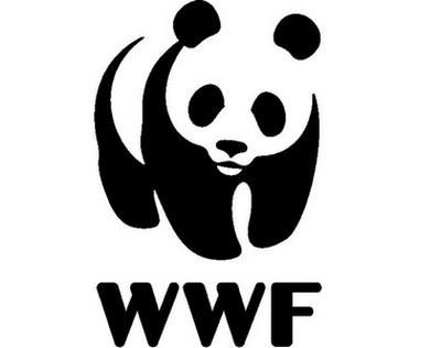 """Intollerabile aggressione al patrimonio naturale del Parco, WWF: """"Fermate lo scempio"""""""