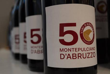 Identità territoriale del Montepulciano d'Abruzzo