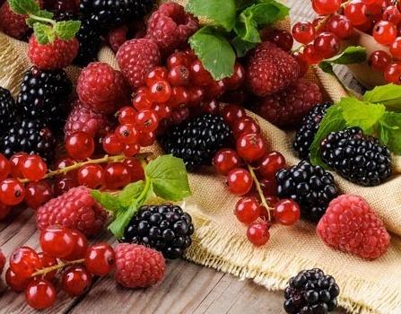 I frutti del bosco