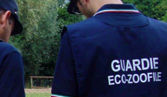 """""""XV Corso Allievi Guardie Ecozoofile Regionali"""": cerimonia di consegna degli attestati ai nuovi operatori"""