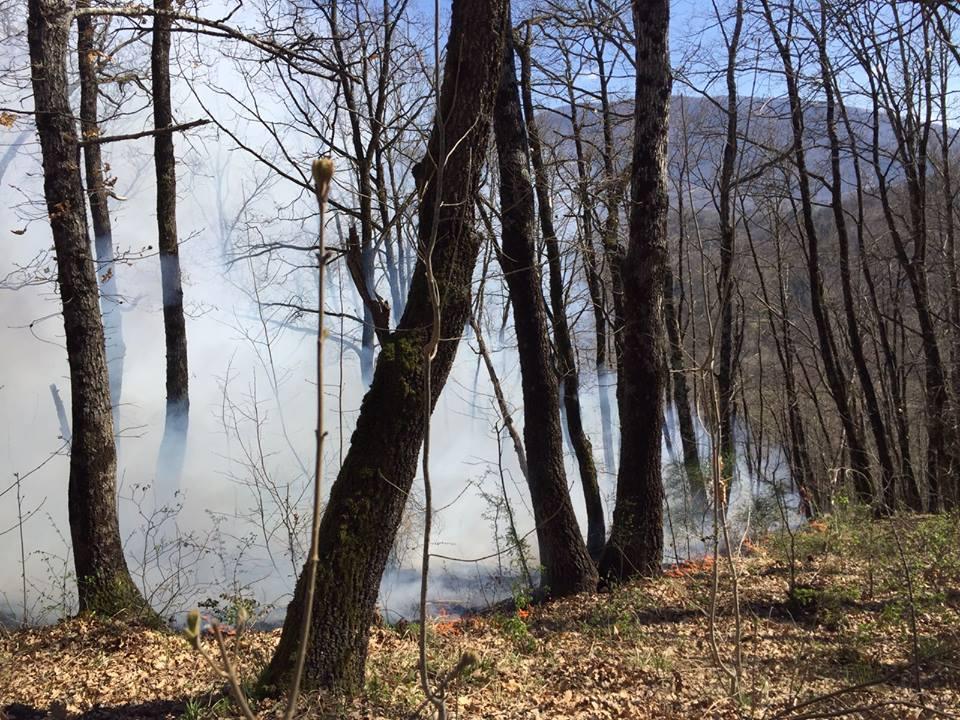 Danno fuoco alle sterpaglie e bruciano i boschi. Scattano le prime denunce per l'escalation di incendi nella Marsica