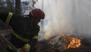 Prevenzione rischio incendi, l'ordinanza del sindaco De Angelis