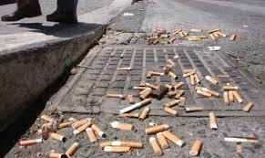 Civitella Roveto, il M5S organizza una passeggiata ecologica per ripulire le strade