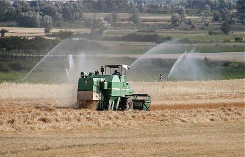 """Confagricoltura L'Aquila: """"L'intossicazione elettorale rischia di far perdere i finanziamenti per l'irrigazione della piana del Fucino"""""""