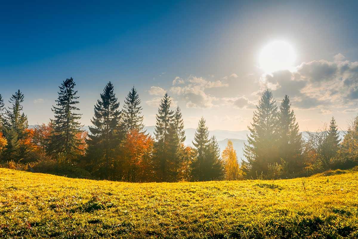 Soleggiato nei prossimi giorni. Dai primi di Ottobre arriveranno fresco e piogge autunnali