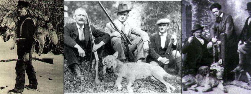 I lupari, cacciatori di lupi