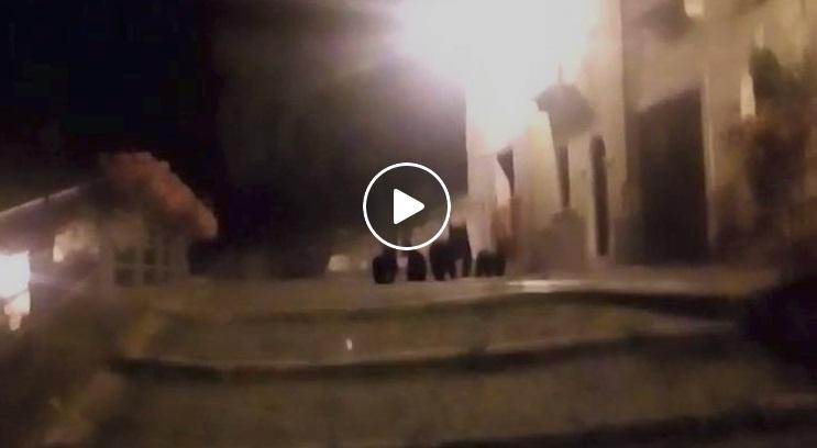 Spettacolare video girato a Roccapia, incontro in paese con mamma orsa e tre cuccioli