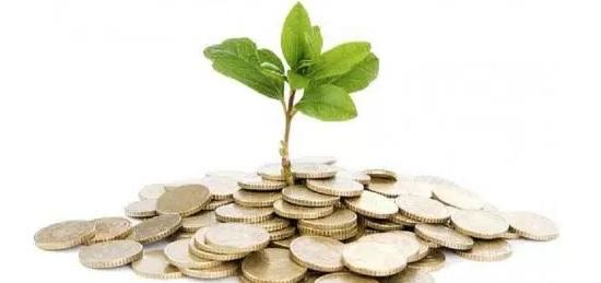 Fondo creato dal taglio degli stipendi dei parlamentari 5 for Parlamentari 5 stelle elenco