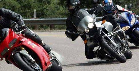 """L'associazione Salviamo l'Orso: """"I motociclisti non rispettano i limiti di velocità. Animali e bambini a rischio investimenti"""""""
