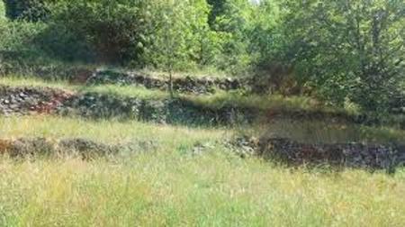 Presentazione del progetto recupero terreni agricoli incolti