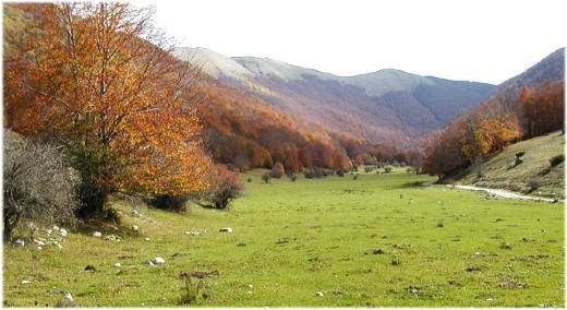 Conservazione ambientale e sviluppo sostenibile a Villavallelonga