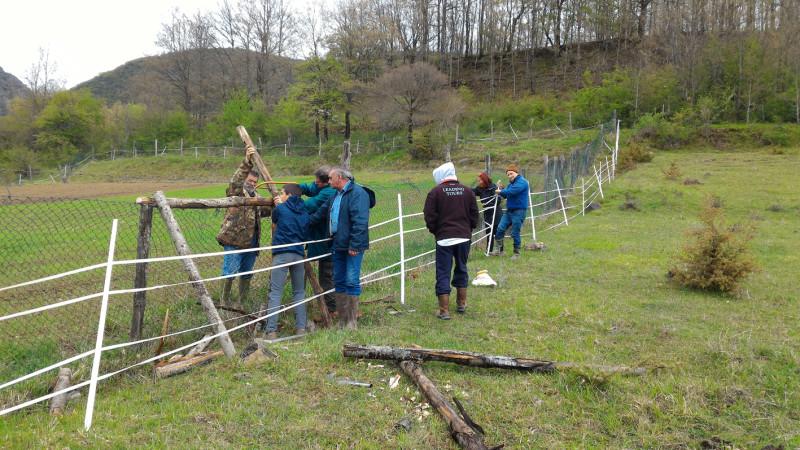 """La """"green valley"""" del Giovenco. Volontari a lavoro per l'orso"""