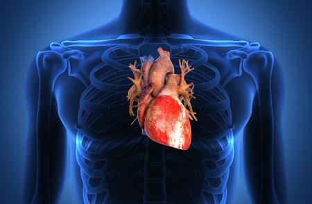 Settimana dello Scompenso Cardiaco
