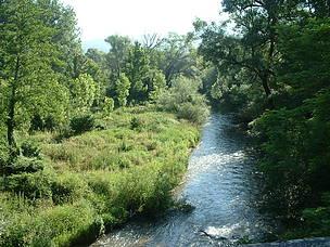 """WWF, progetto per l'infrastruttura verde del fiume Sangro """"I lavori in un Parco non posso svolgersi in periodi in cui procurano danni ad animali e habitat"""""""