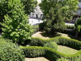 """Progetto """"Dona un albero"""", verde più bello anche grazie ai cittadini"""