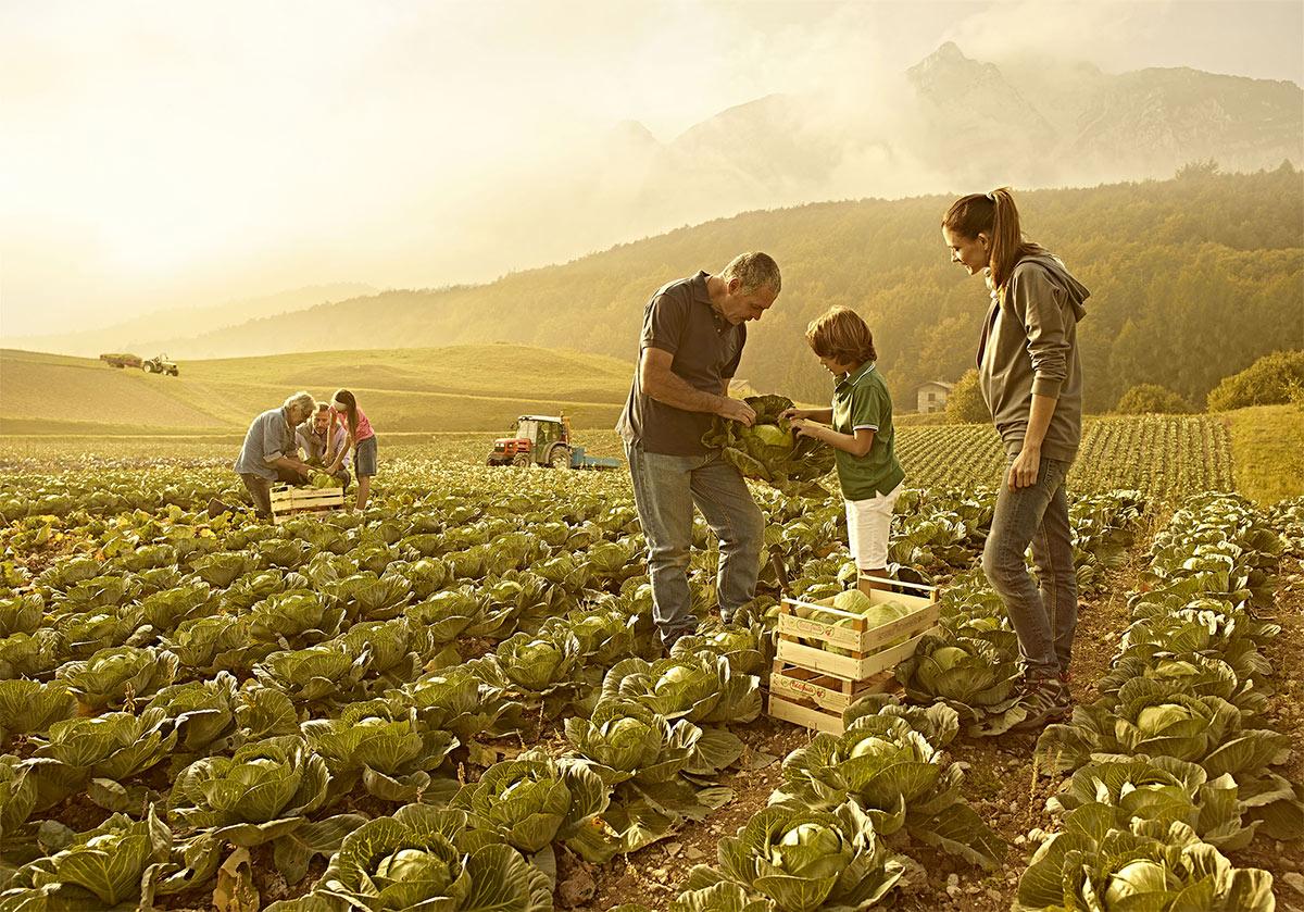 Ad Avezzano assemblea di Confagricoltura L'Aquila: Agricoltura, Agroalimentare, Agroindustria