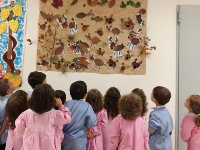 Concluse con successo le attività didattiche del Centro di Educazione Ambientale del Parco Nazionale D'Abruzzo