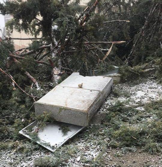 Albero cade su una cabina dell'Enel, Celano senza corrente