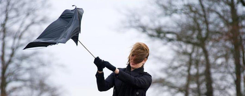 Violente folate di vento nel Fucino: un video su Facebook come testimonianza