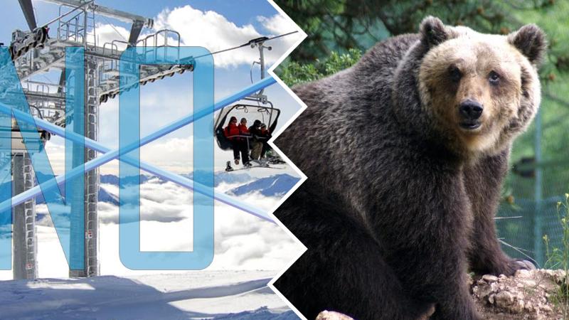Impianti e nuove piste da sci sul Monte Magnola, Salviamo l'Orso e CAI Abruzzo contrari al progetto