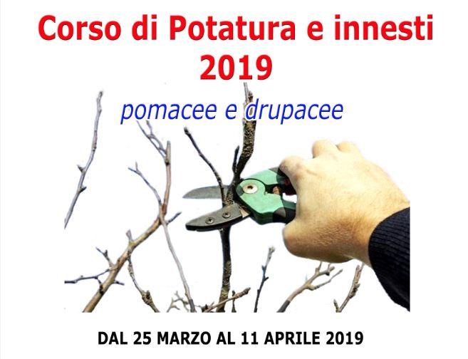 """Corso di potatura e innesti all'Istituto Agrario """"A. Serpieri"""" di Avezzano"""