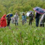 Le profumerie più importanti d'Italia nel cuore del Parco d'Abruzzo per conoscere il patrimonio olfattivo