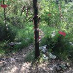 Al via la Ultra Sky Marathon Serra di Celano 2019: 90 Km lungo i sentieri del Parco Sirente Velino