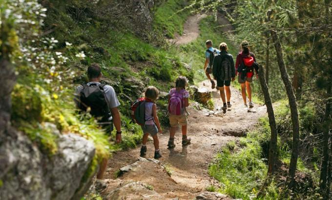 Grifoni, gatti selvatici e orchidee: con l'estate la biodiversita' diventa protagonista alla Riserva Naturale del Monte Velino